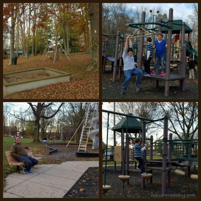 Fall at Park