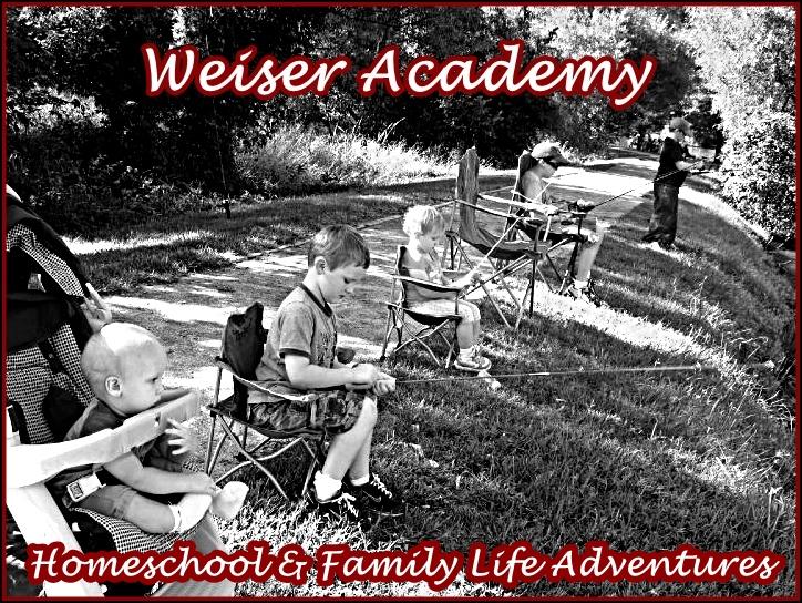 Weiser Academy